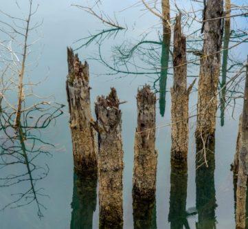 Εκδρομή στη Λίμνη Δόξα, Λίμνη Στυμφαλία